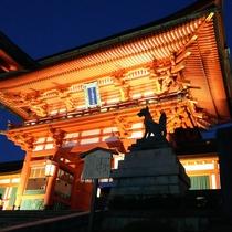 伏見稲荷大社夜景