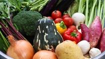 五島列島の食材(旨味の野菜)