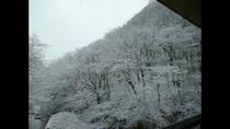 よもぎ山(冬)