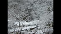 中庭(冬)