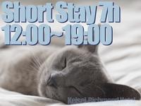 【日帰り】12:00〜24:00の間で最大7h利用できるデイユースプラン☆