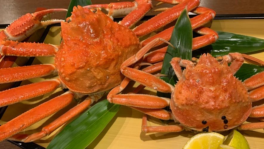 *【ずわい蟹・香箱蟹食べ比べ】蟹はお一人様一杯ずつご用意いたします♪