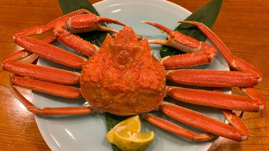 *【ずわい蟹】金沢港で獲れた新鮮なズワイ蟹です♪