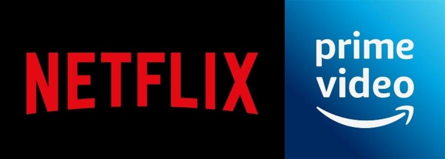 NETFLIX+Amazon プライム/豊富な視聴プログラム