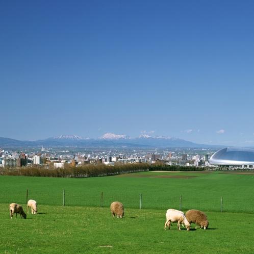 【周辺・札幌市内景色など】羊ヶ丘展望台・ひつじイメージ