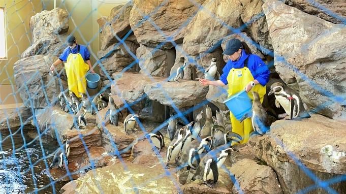【ファミリー限定】水族館チケットプレゼント(お子様分)&水族館でお得なクーポン付き♪【3名以上☆】