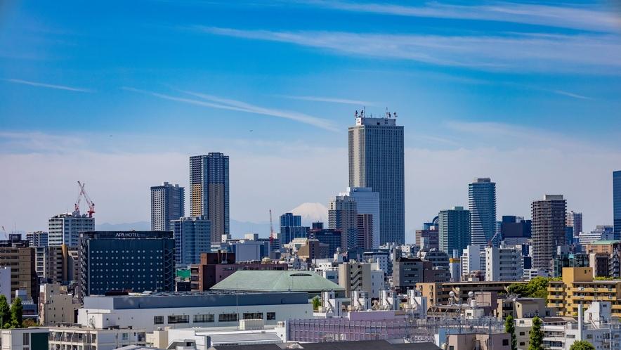 天気が良ければ富士山をみることができます。