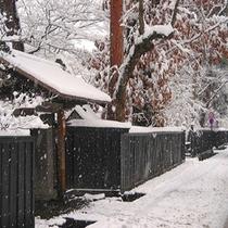 雪と岩橋家黒塀