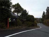 道路からの入り口