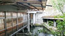 *【庭園】館内をぐるりと囲むように鯉が池で泳いでいます。圧巻ですよ!