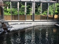 天然温泉大浴場・森にかこまれて