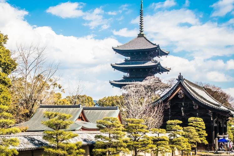 人気観光地 東寺まで徒歩圏内です