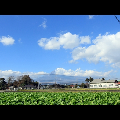 【朝食付】心をこめておもてなし!農家民宿で田舎体験を楽しもう♪