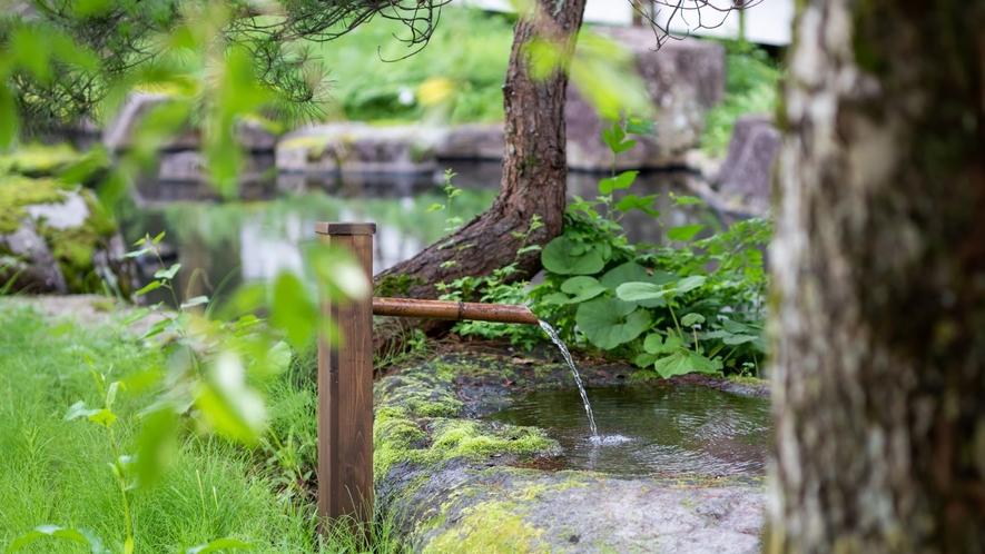 ◆【禁煙】《仙岳荘》庭園眺望