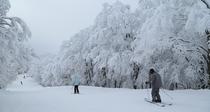[スキー&スノーボード]栂池高原スキー場徒歩5分