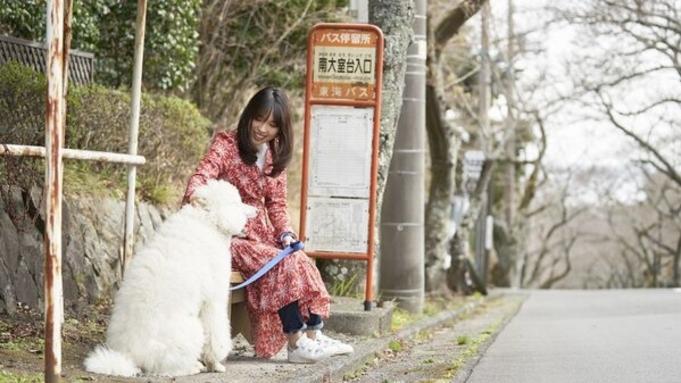【平日限定!大型犬(20kg以上)宿泊代無料】大型犬ウェルカムプラン<3大特典付き>