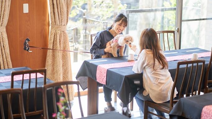 【ファミリープラン♪】お子様宿泊半額!家族で楽しむペット旅は伊豆高原で!海幸楽しむカジュアルなステイ
