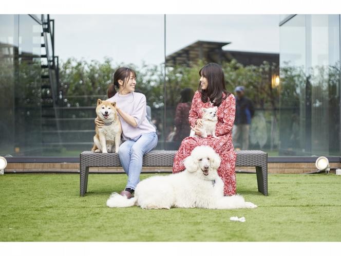 愛犬コミュニティ広場(中庭)