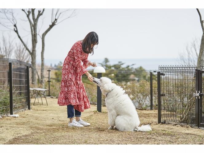 愛犬コミュニティ広場(屋外)