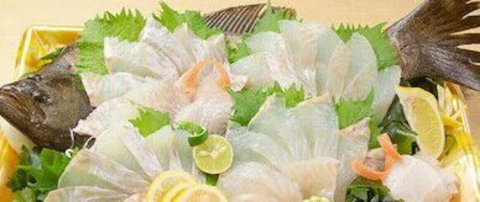 【12月2〜23日限定】ヒラメ、ヒラメ、ヒラメ 1匹食べ尽くしプラン