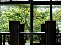 食堂 新緑シーズン
