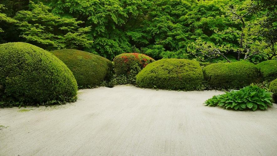 【観光情報】詩仙堂の庭
