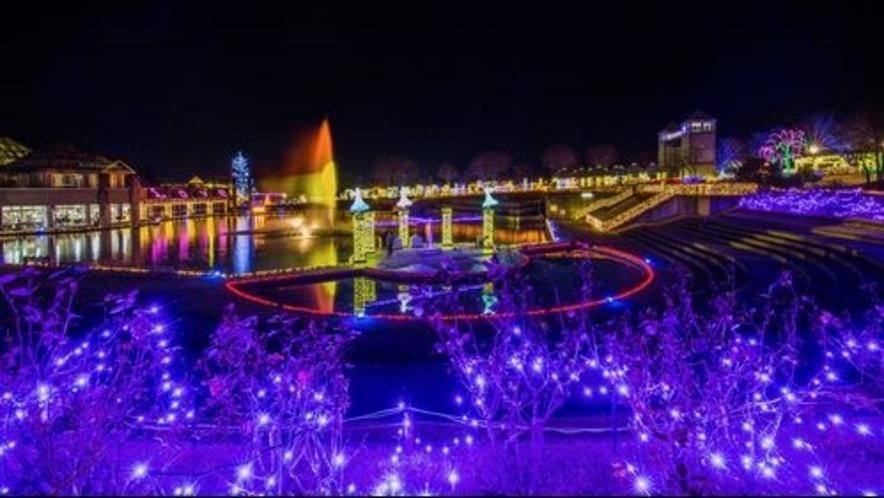 ■ぐんまフラワーパーク イルミネーション(写真提供:前橋観光協会)