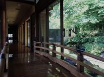 富士見館廊下2