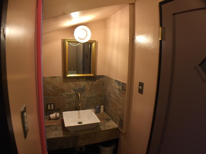 有料浴槽洗面所