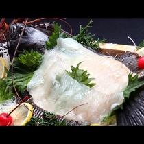 *旬魚の活き造りは、ぎゅっと締まった身と噛めば噛むほど広がる甘み、新鮮だからこそ楽しめる味です。