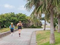 海岸線の遊歩道はジョガーにも人気のエリア