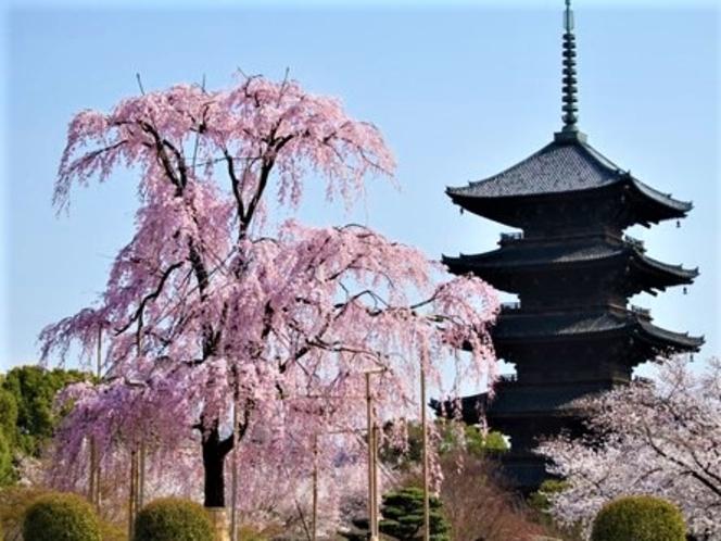 京都・神戸・奈良へも