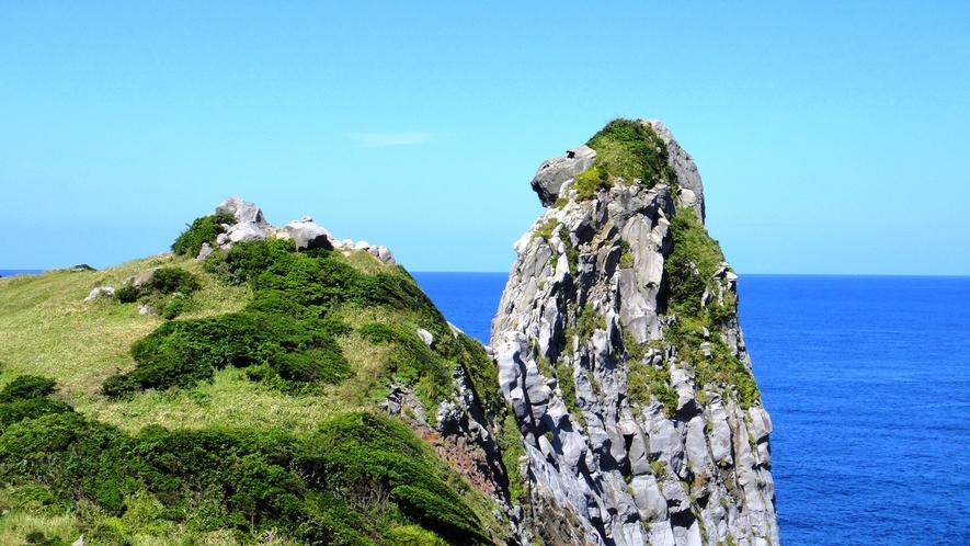 *【観光】猿岩