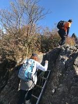 山頂 巨岩