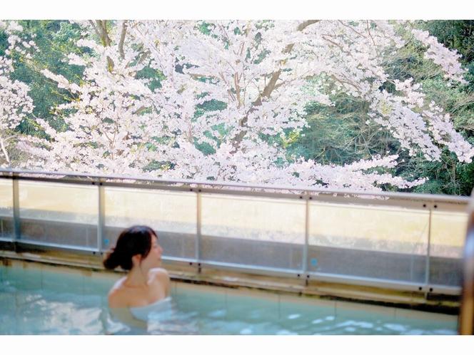 目前の桜風景が堪能できる露天風呂