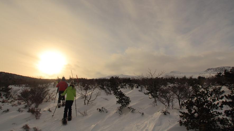 【スノーシュー】冬にしか見られない白銀の世界、景色を楽しもう♪
