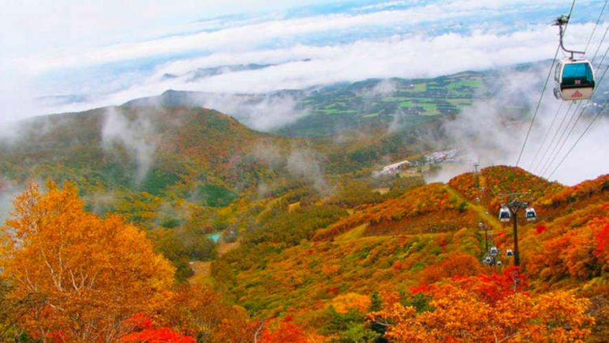 【ロープウェイ】秋の紅葉シーズンには安達太良の色とりどりの紅葉を眼下に望む♪