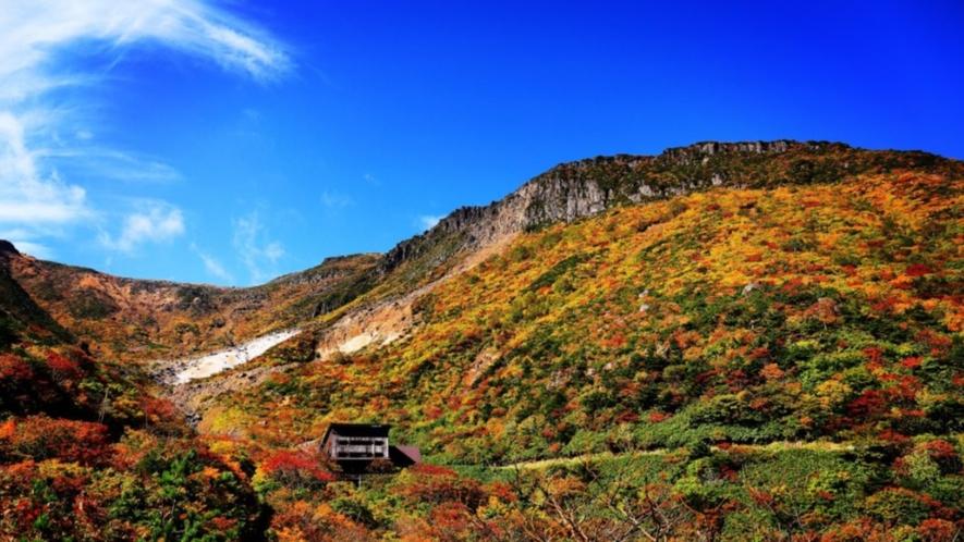 【紅葉】安達太良山の紅葉は色彩豊か♪一度は見てみたい絶景です!