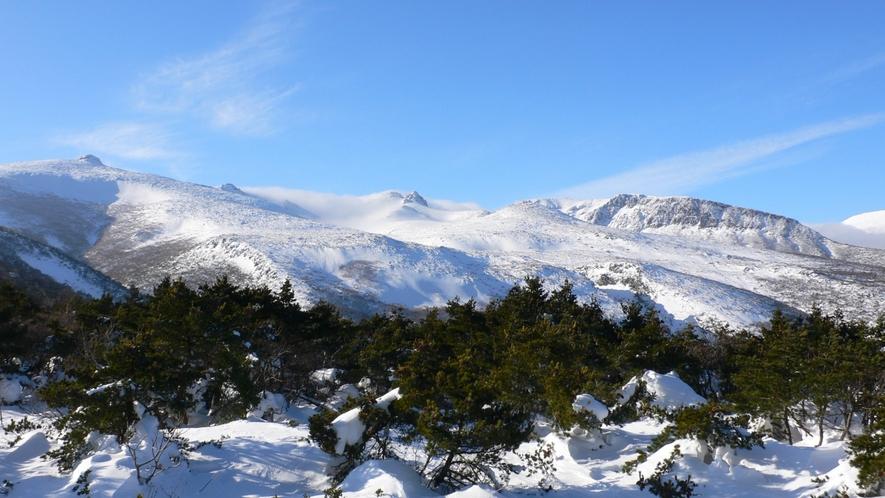 【雪景色】