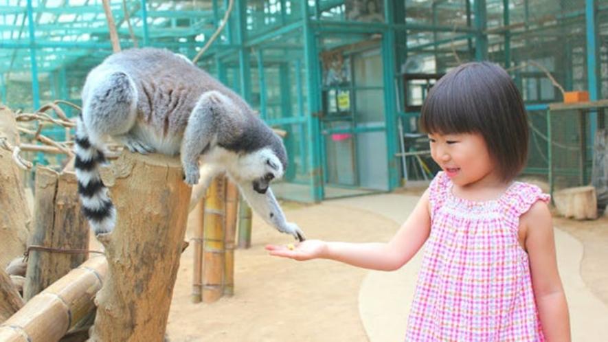 【東北サファリパーク】世界から集まった動物を身近に感じられる♪