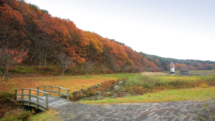 【鏡が池】紅葉