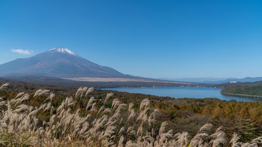 パノラマ台からの富士山と南アルプス