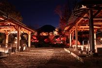 富士山が美しい紅富士の湯