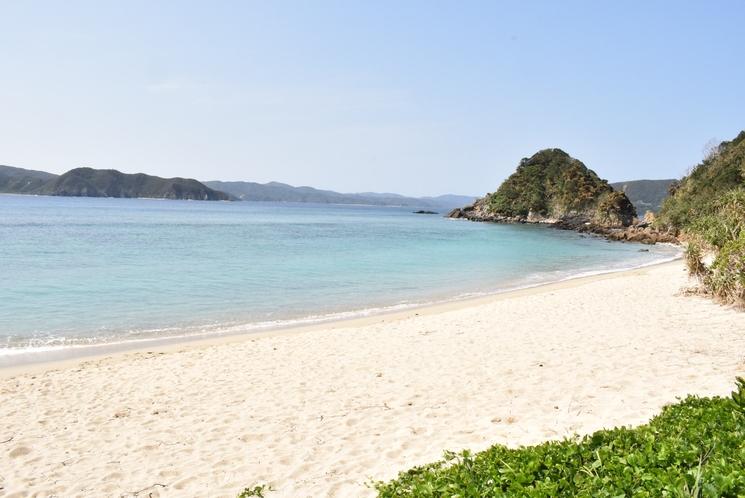 宿の目の前は海(ヤドリ浜)