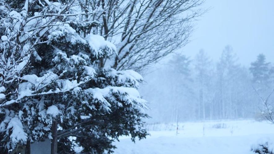 *【冬の近隣風景】人里離れた立地だからこその静けさと風景