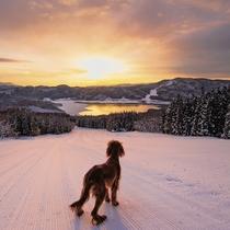 *【周辺観光_白馬さのさか】長野市や松本市からアクセスしやすいスキー場です。のびのび滑りたい方に◎