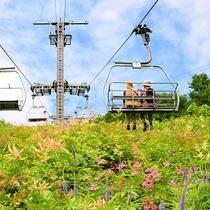 *【周辺観光】標高の高いエリアまでスキー場のリフトを使ってアクセスOK!