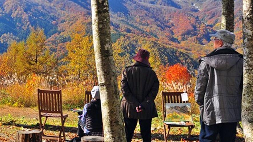 *【周辺観光_ねずこの森】北アルプスの山並みを楽しめる岩岳山頂にあるトレッキングコースです。