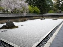 【京都の庭園】龍安寺 石庭