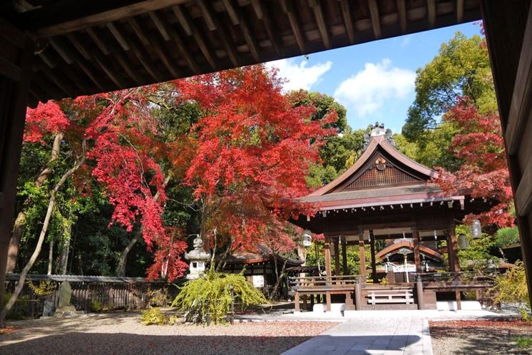 ◆梨木神社◆